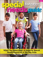 Special Needs Guide - 2018